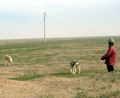 Afganistan 2005�
